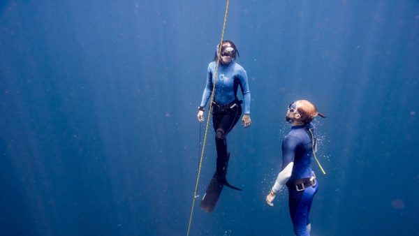 Isla Indah Retreat Free Diving